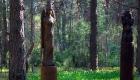 этнокультурный парк сувар
