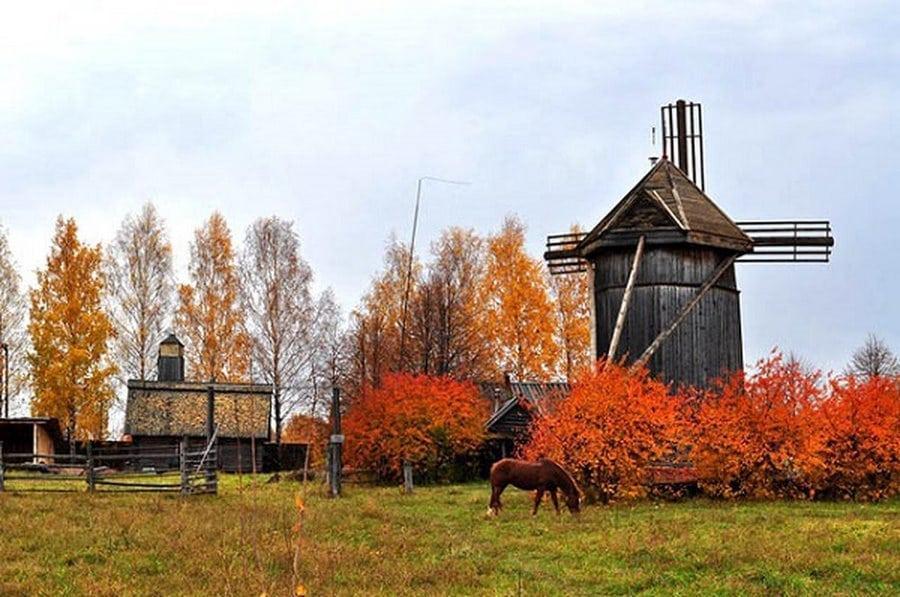 Село Шоруньжа