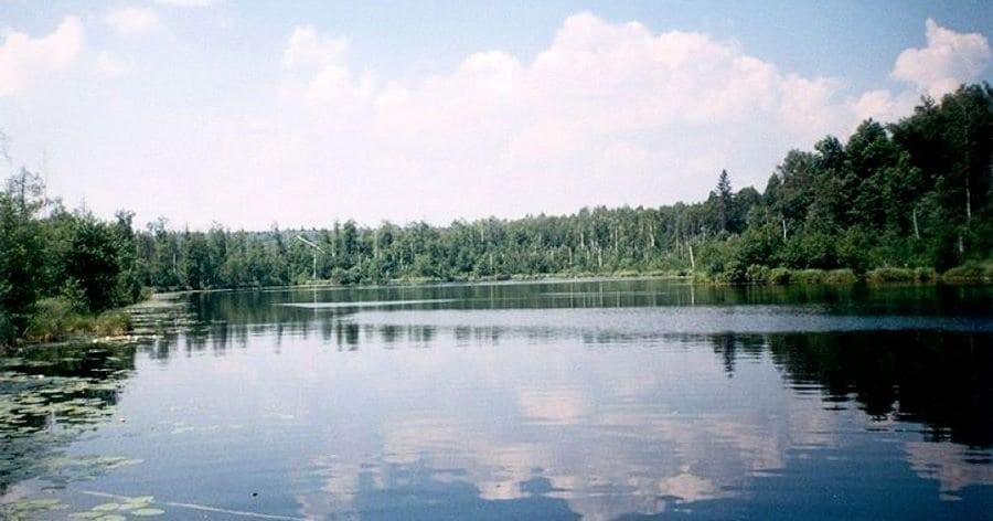 Парк Марий Чодра
