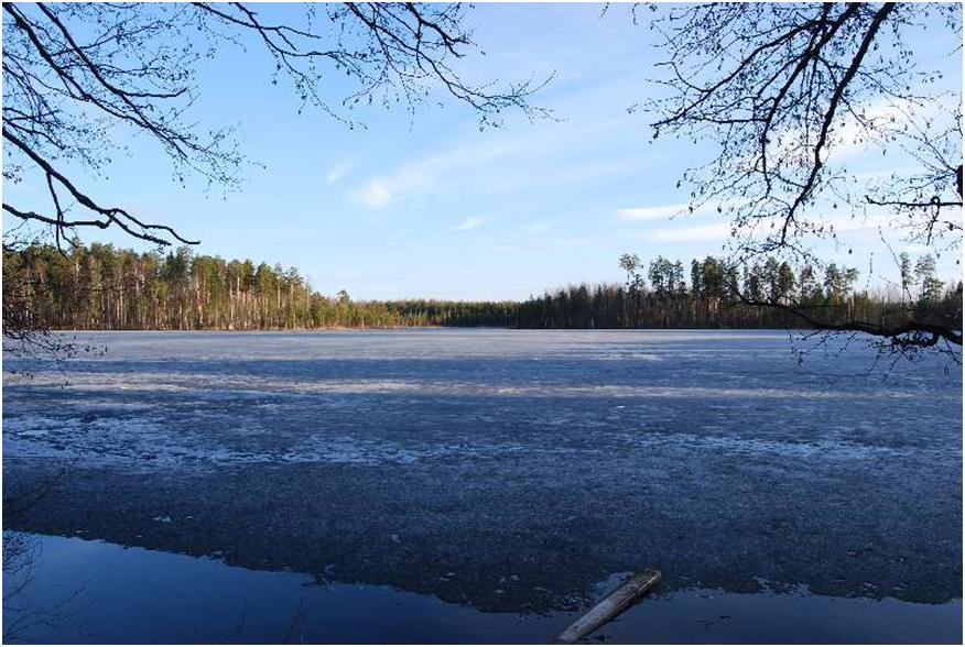 Озеро Лесная сказка