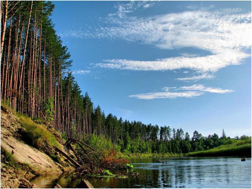 Озеро Шап – укромный уголок живой природы для комфортного отдыха