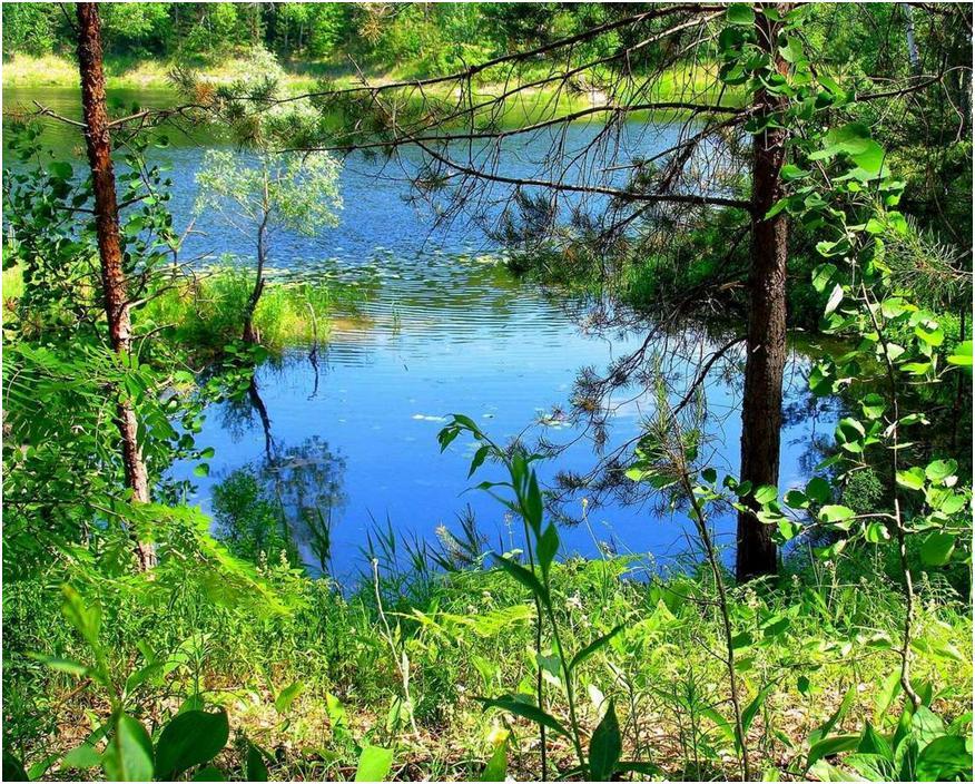 Озеро Мушаньер в Марий Эл