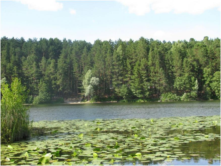 Чудесное озеро Яльчик – обособленный природный край республики Марий Эл