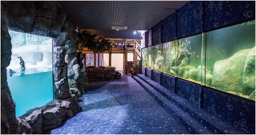Казанский океанариум