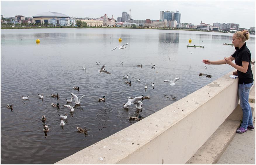 Озеро Кабан в Казани